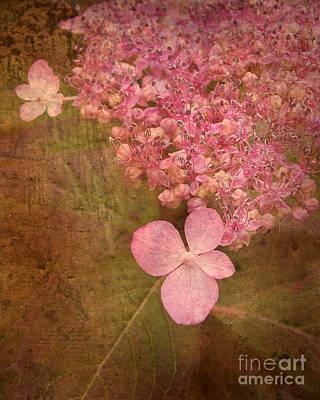Scent Of Hydrangea Art Print