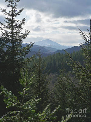 Photograph - Schiehallion From Killiecrankie by Phil Banks