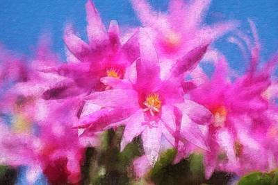 Painting - Schlumbergera In Bloom - Pink by Sandy MacGowan
