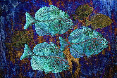 Digital Art - School Of Fossil Fish by Sandra Selle Rodriguez
