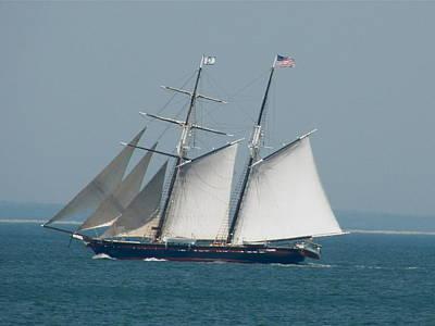 Schooner At Sail Art Print