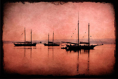 Photograph - Schooner Fleet by Fred LeBlanc