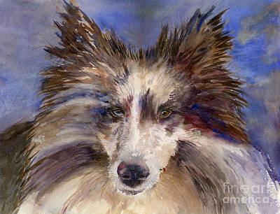Sheltie Painting - Schooner In Color by Amy Kirkpatrick