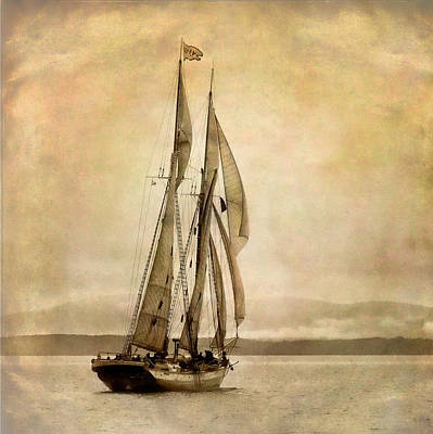 Photograph - Schooner Mary Day by Fred LeBlanc