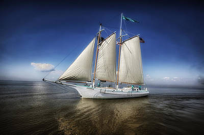 Schooner On Mobile Bay Art Print by Mountain Dreams
