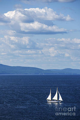 Penobscot Bay Photograph - Schooner On The Bay by Diane Diederich