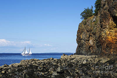 Ocean Sailing Photograph - Schooner Sailing In The Bay by Diane Diederich