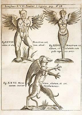 Devils Claw Photograph - Schott Demons, 1662 by Paul D. Stewart