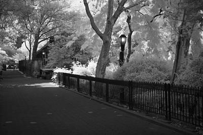 Photograph - Schurz Park Walkway Ir by Dave Beckerman