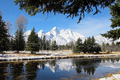 Schwabacher Landing - Grand Teton National Park Art Print