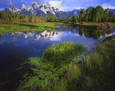 Impressionist Landscapes - Schwabacher Landing by Ray Mathis