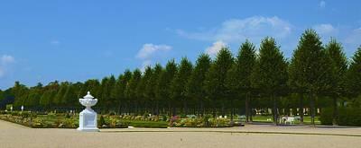 Photograph - Schwetzingen Palace Garden by Corinne Rhode