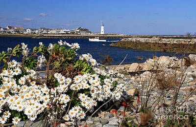 Photograph - Scituate Harbor Light-fall by Butch Lombardi