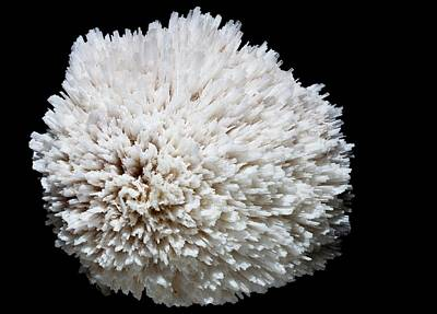 Fibrous Crystals Photograph - Scolecite by Dirk Wiersma