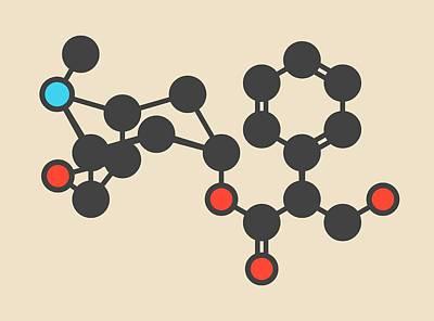 Jimson Photograph - Scopolamine Drug Molecule by Molekuul