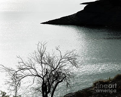 White Photograph - Scorpion Bay by Arne Hansen