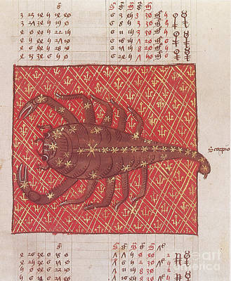 Photograph - Scorpius Constellation Zodiac Sign by Science Source