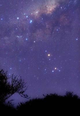 Antares Photograph - Scorpius by Luis Argerich
