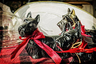 Scotties In The Window Art Print by Caitlyn  Grasso