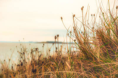 Photograph - Scottish Coastline by Lenny Carter