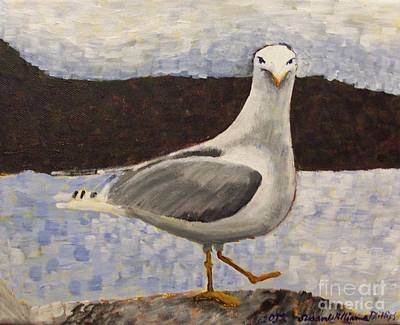 Scottish Seagull Art Print