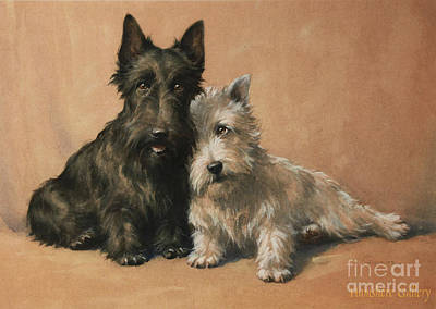 Sports Paintings - Scottish Terrier by Christopher Gifford Ambler