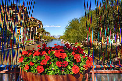 Scottsdale Waterfront Art Print