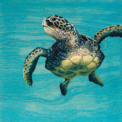 Hawaii Sea Turtle Painting - Scotty's Turtle by Emily Brantley