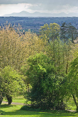 Photograph - Scrabo Country Park - County Down by Jane McIlroy