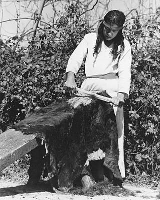 Photograph - Scraping A Bear Hide by Underwood Archives Onia