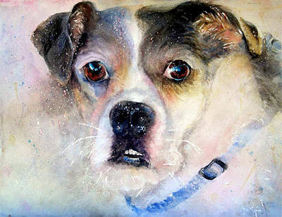 Wall Art - Painting - Scrappy by Beverly Berwick