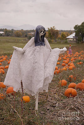 Pumpkin Patch Photograph - Scream by Juli Scalzi