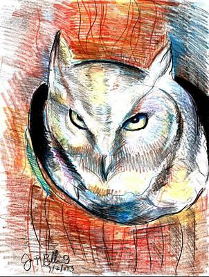 Screech Owl  Art Print by Jon Baldwin  Art