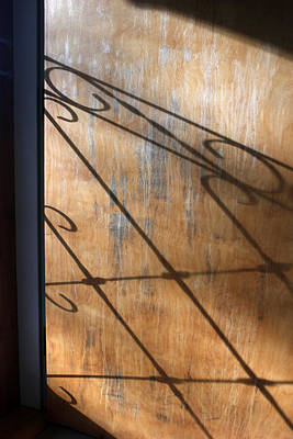 Photograph - Screen Door Shadow by Mary Bedy