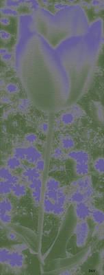 Photograph - Screen Violet Flowers by Debra     Vatalaro