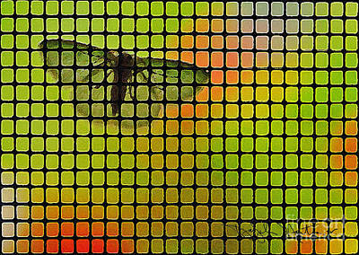 Screened Moth Art Print