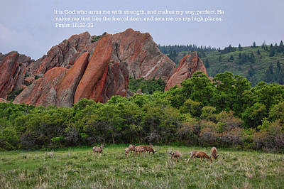 Photograph - Scripture And Picture Psalm 18 32 33 by Ken Smith