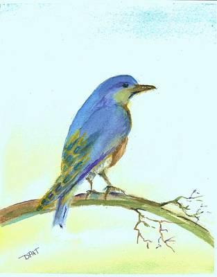 Scrub Jay Painting - Scrub Blue Jay by David Patrick