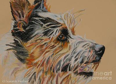 Pastel - Scruff by Susan Herber