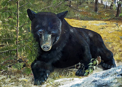 Painting - Scruffy - Black Bear - Unsigned by Jan Dappen