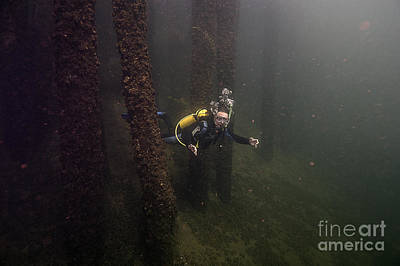 Photograph - Scuba Diver In Welland by JT Lewis