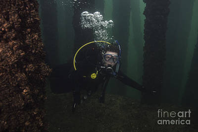 Photograph - Scuba Diver Train Bridge by JT Lewis