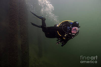 Photograph - Scuba Diver Welland by JT Lewis