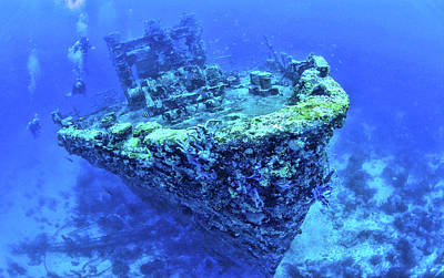 Aruba Photograph - Scuba Divers Swimming Near Jane C by Panoramic Images