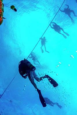 Scuba Diving Art Print by Louise Murray