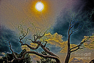 Abstract Photograph - Sculpture In The Sun by Tom Gari Gallery-Three-Photography