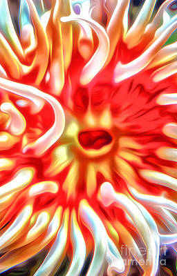 Digital Art - Sea Anemone by Gregory Dyer