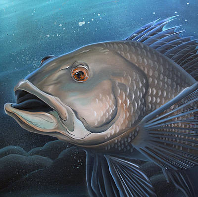 Painting - Sea Bass by William Love