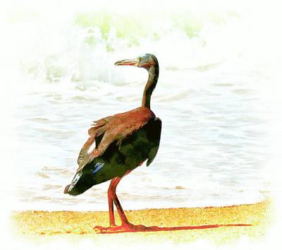 Pet Portraits Digital Art - Sea Bird by Yury Malkov