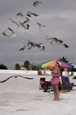 Photograph - Sea Birds by Gordon Engebretson
